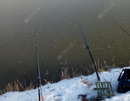 下雪过后渭河野钓,一个字,冷。