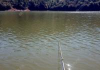 水库钓鱼选钓位方案与用饵思路