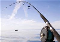 鱼竿的选购建议与使用心得介绍