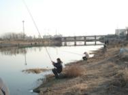 """钓位只要选在""""这"""" 次次一定是鱼道,再不学会就别钓鱼了!"""