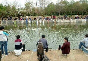 老崔钓鱼园