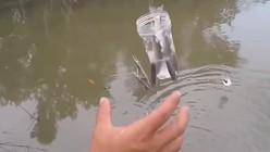 """一根线和一个空瓶子就能钓鱼?快来学学""""瓶钓""""的爆护技巧吧!"""