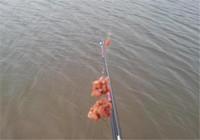 台钓调平水调漂技巧的关键点