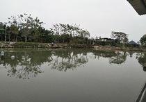 金樵农庄休闲钓鱼场