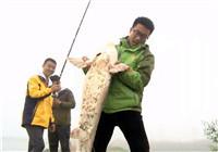 《权威发布》第14期 蓝山黑坑测试钓具 中获巨物遭跑鱼