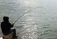 鱼情知多少,天气来报告——钓鱼人必备天气技能