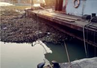 春季江河钓鱼用饵的技巧