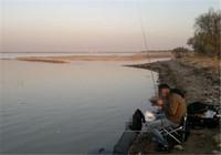 浅谈如何在黄河台钓鲤鱼 有哪些技巧?