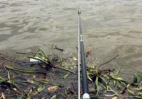 江河野钓常用的诱钓技巧