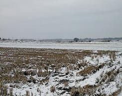 冬季野钓应注意的几个问题