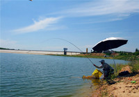 春季水库或野钓选钓位技巧分享