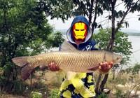 浅谈春夏钓草鱼如何找鱼与用饵