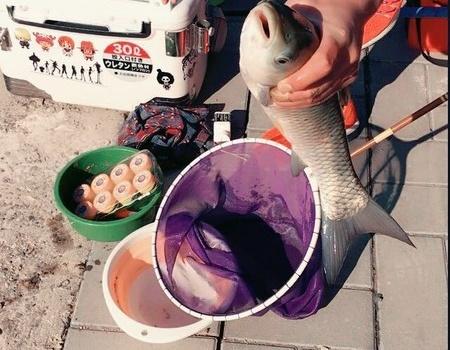 3月26日房山星期六农场小聚 大塘垂钓两小时草鱼一尾切线两幅 天元饵料钓翘嘴