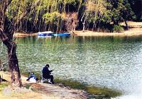 水塘春季钓鱼技巧汇总(一)