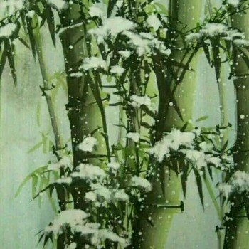 竹林慕飞雪
