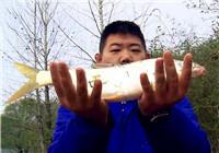 《我的7日江湖》第二季06期 老鬼队困难重重 没有食物饥饿难耐(上)