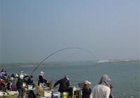 水库钓鱼技巧之选择钓位及窝料