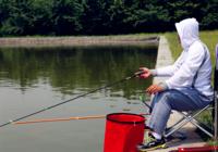 水塘春季钓鱼技巧汇总(二)