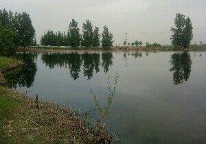 东羊石沙河