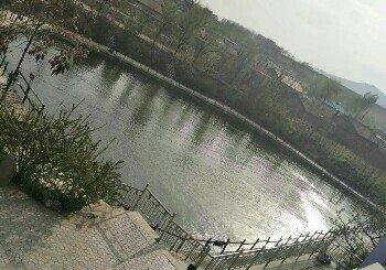 紫阳山庄垂钓园