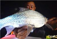 《游钓中国》第二季47集 大毛探钓五点梅水库 夜间作战土鲮鱼