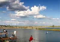 钓鱼人浅析坑塘钓鱼技巧之阶段性应变