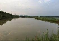 丁罗湾钓鱼场