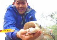 《我的7日江湖》第二季 09期 宝飞龙队黄尾连竿 让队员哭笑不得(下)