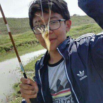 钓鱼雨花石
