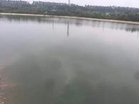 乡村钓鱼场