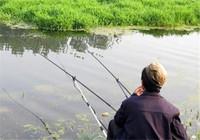 野钓技巧基础教学 适用于野钓新手