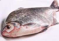 浅析垂钓鳊鱼时饵料以及选位技巧
