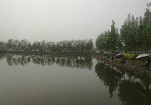 鲁彩蝶园野生鱼垂钓园