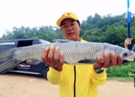 《猎青》第二季 第10集 夜战湖北皇家 运气爆棚连中标鱼