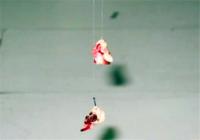 用红虫饵钓鲫鱼需要注意些什么