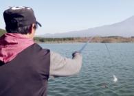 《名品渔具鉴赏》DAIWA达亿瓦 2019款 波纹龙三代