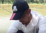 《户外老曹》 钓鲤鱼很流行的黄面面 你知道怎么用吗?