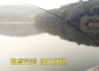 《名品渔具鉴赏》美人鱼冠军杯鱼竿