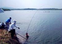 夏季水库野钓需要常用技巧汇总