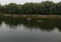 戴庄天鹅湖农家乐垂钓园