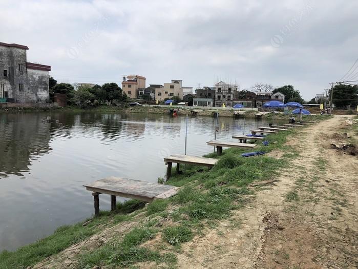塘利钓鱼场