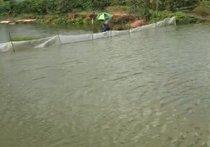 聚宜钓鱼场
