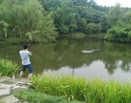 钓场练练手 龙王恨饵料钓鲈鱼