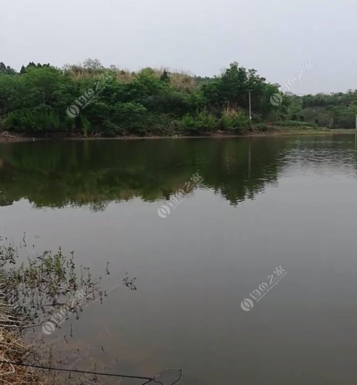 龙渔岛农庄