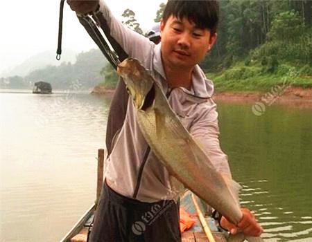 试试怎么发鱼获 拟饵钓翘嘴