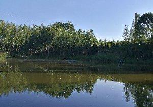 木头沟小塘