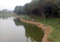 齐春生态庄园