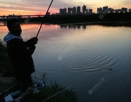 炎炎夏日,夜钓渭水。 龙王恨饵料钓鲤鱼