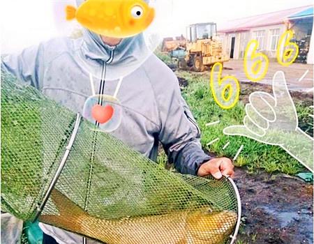 这个周末惊喜不断,钓了N次的鱼塘终于得偿所愿!