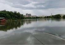 鲁港巨物塘